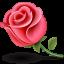 akhawat_islamway_1517204468__flower-icon.png