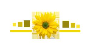 akhawat_islamway_1517554456__post-36649-0-26558400-1333727572.png