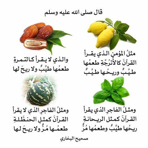 akhawat_islamway_1520935844__26871617_149280965869409_1654404325629231104_n.jpg