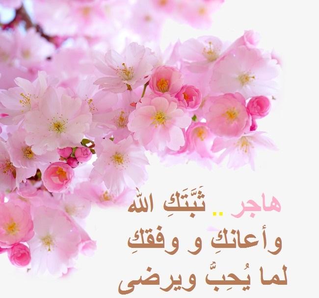 akhawat_islamway_1526485739__4ceba211480ae3c746c9ae18ffe3b0af.jpg