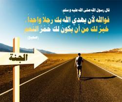 thumb_akhawat_islamway_1417212452__mossabaka.jpg