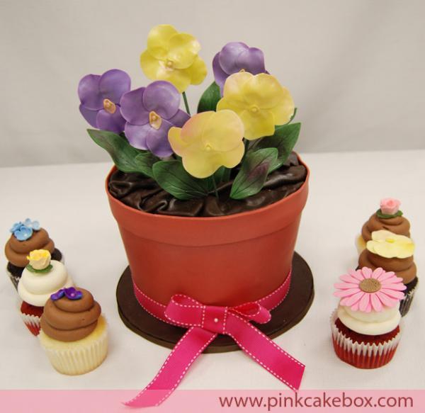 big-cake589.jpg