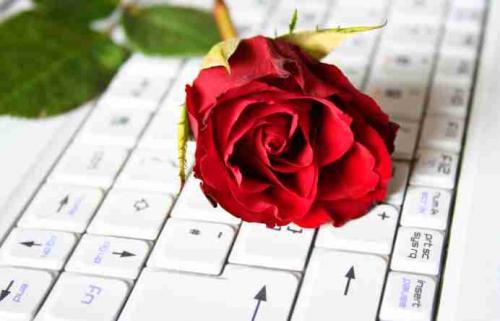 post-97886-1267634427_thumb.jpg