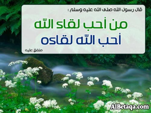 raqaeq_m0006.jpg