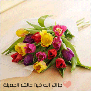 18084_bdutnovase_flower_xxl_as_Smart_Object_1.png