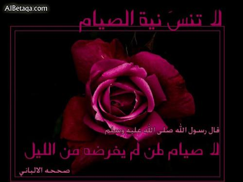 post-111302-1250673107_thumb.jpg