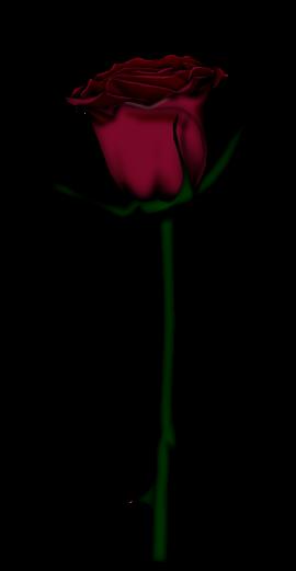 احدث ملحقات الفوتوشوب 2019سكرابز أزهار post-97886-125778334
