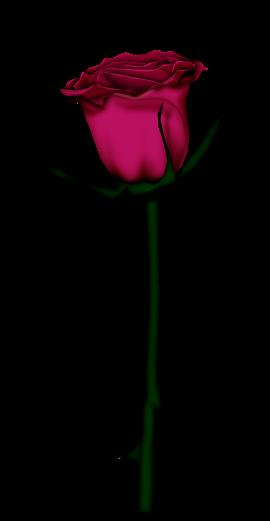 احدث ملحقات الفوتوشوب 2019سكرابز أزهار post-97886-125778335