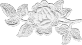 lace_rose_white.png