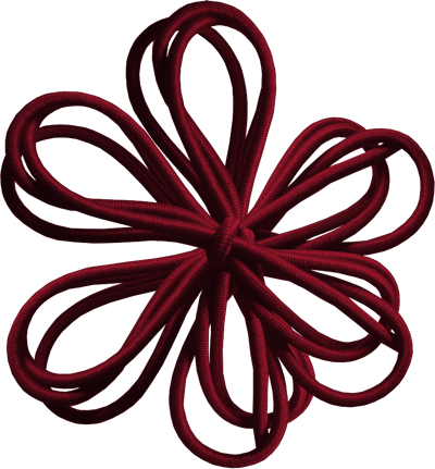 BVS_Chocolate_flower05.png