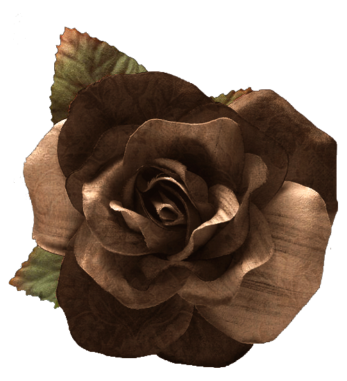 chocolate_rose.png