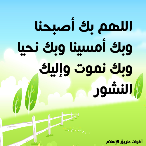 post-97886-1260387151.jpg
