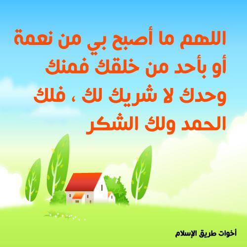 post-97886-1260387163.jpg