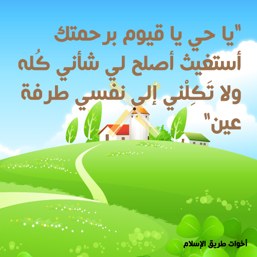 post-97886-1260387180.jpg