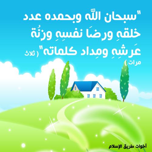 post-97886-1260387219.jpg