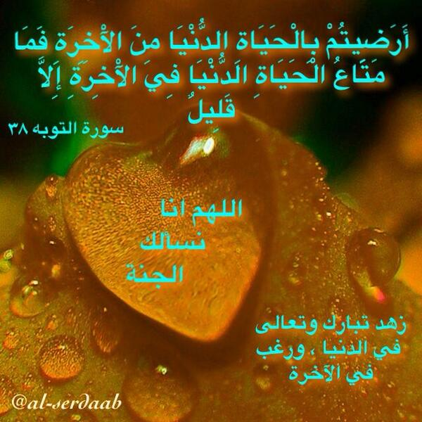 image.png.a14449a45d49ce5866180a3a4ec0abe8.png