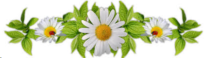 image.png.11ed0764e667266f93383e03246c3d13.png