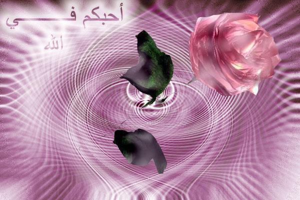 حوار بين بلحة وطماطماية Post-22883-1168828787