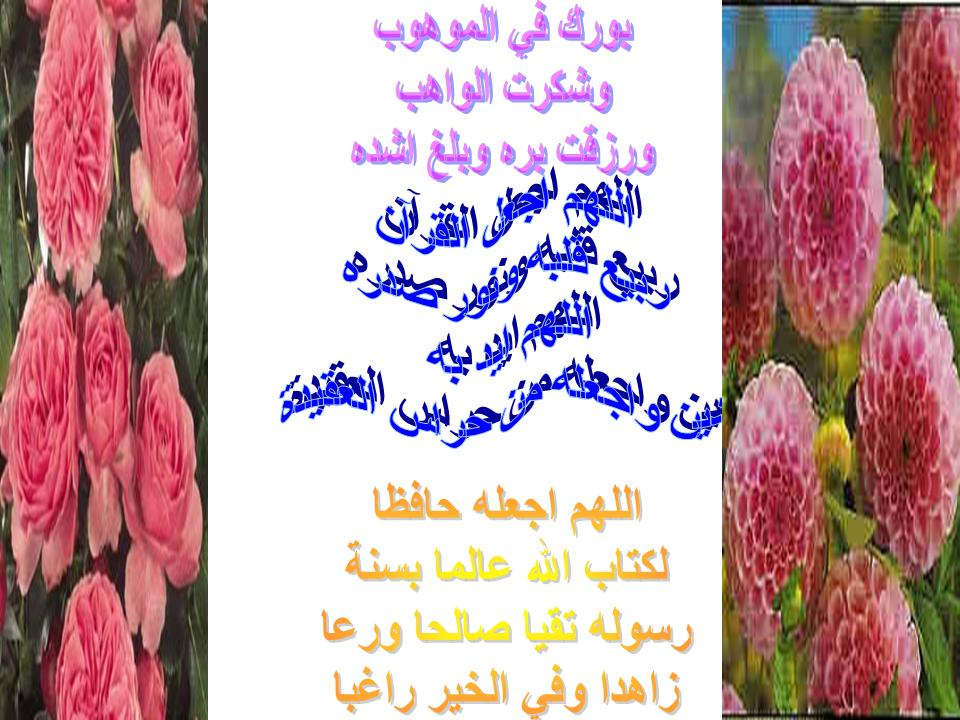 post-25677-1181861169.jpg