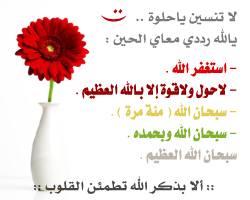 post-26351-1194986744.jpg