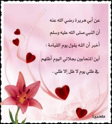 إهداء الى سفيرة الورد♥| - صفحة 2 Post-27039-1174058148