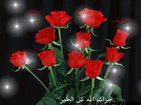 مسجد محمد على باشا من اجمل مساجد مصر Post-27230-1174414215