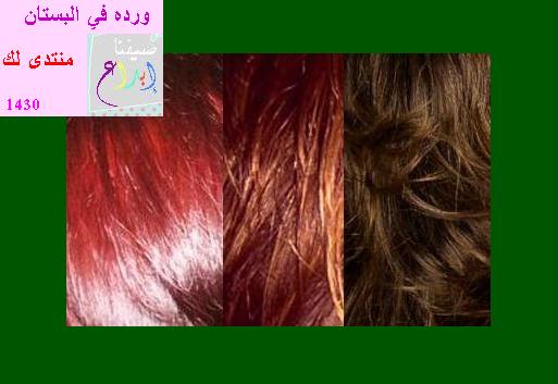 اصبغي شعرك في المنزل بخلطات طبيعية أعجبني فنقلته قسم العناية بالشعر أخوات طريق الإسلام