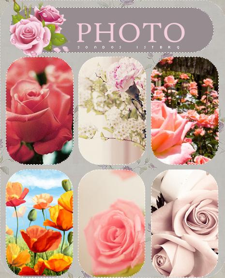 صور ورد للتصميم