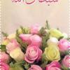 Noor Aliman