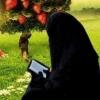 ايمان عصام محمود