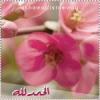 أمة الرحمن *